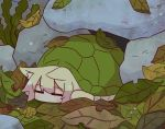 1girl animal_ear_fluff animal_ears animalization blonde_hair closed_eyes commentary_request fox_ears kemomimi-chan_(naga_u) leaf naga_u original rock sleeping solo turtle turtle_shell
