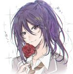 1girl bang_dream! blazer chromatic_aberration collared_shirt flower grey_jacket hair_between_eyes haneoka_school_uniform holding holding_flower jacket long_hair looking_at_viewer necktie ponytail portrait purple_hair red_flower red_rose rose sakaki_kayumu school_uniform seta_kaoru shirt sidelocks sketch smile solo sparkle translation_request violet_eyes white_background