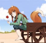 1girl animal_ears artist_name barefoot blush brown_eyes brown_hair day eyebrows_visible_through_hair fox_ears fox_tail highres holo long_hair looking_at_viewer once_11h outdoors parted_lips sitting smile solo spice_and_wolf tail teeth watermark