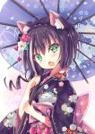 1girl animal_ear_fluff animal_ears bangs black_flower black_hair black_kimono blue_umbrella cat_ears commentary_request eyebrows_visible_through_hair fang floral_background floral_print flower frilled_sleeves frills green_eyes hair_between_eyes hair_flower hair_ornament highres hizaka holding holding_umbrella japanese_clothes kimono kyaru_(princess_connect) long_sleeves looking_at_viewer multicolored_hair obi open_mouth oriental_umbrella princess_connect! princess_connect!_re:dive print_kimono print_umbrella red_flower sash solo streaked_hair umbrella upper_body white_flower white_hair wide_sleeves