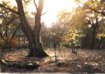 autumn autumn_leaves day leaf maple_leaf no_humans original outdoors scenery signature sketch sky tree white_sky yk_funa