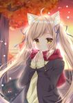 1girl animal_ears autumn black_jacket blurry breath cat_ears commentary_request depth_of_field hamikoron highres jacket light_brown_hair long_hair long_sleeves original red_scarf scarf solo sweater twilight twintails upper_body yellow_eyes