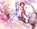2girls brown_eyes brown_hair cherry_blossoms dress feng_you grey_eyes in_tree luo_tianyi multiple_girls pink_hair sitting sitting_in_tree tree tree_branch umbrella vocaloid vsinger yuezheng_ling
