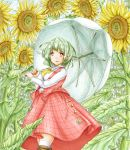 1girl blue_sky boots breasts brown_footwear clouds commentary contrapposto cravat day eyebrows_visible_through_hair feet_out_of_frame field flower flower_field green_hair holding holding_umbrella kazami_yuuka kneehighs large_breasts long_sleeves looking_to_the_side open_clothes open_mouth open_vest outdoors plaid plaid_skirt plaid_vest red_eyes shirt short_hair skirt sky solo standing sunflower touhou umbrella vest white_legwear white_shirt yellow_neckwear ys_(ytoskyoku-57)