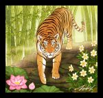 animal bamboo black_border border flower leaf looking_at_viewer no_humans original pink_flower plant signature takigraphic tiger white_flower