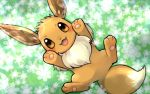 :d blush brown_eyes creature eevee flower from_above full_body gen_1_pokemon grass happy lying on_back open_mouth pokemon pokemon_(creature) signature smile tansho