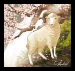 animal black_border border branch flower grass horns looking_at_viewer no_humans original pink_flower plant sheep sheep_horns signature takigraphic tree