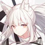 1girl animal_ear_fluff animal_ears arknights arm_up brown_eyes capelet expressionless kurisu_tina long_hair looking_at_viewer platinum_(arknights) ponytail portrait solo white_hair zoom_layer