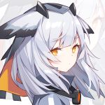 1girl animal_ears arknights expressionless high_collar kurisu_tina long_hair looking_at_viewer looking_to_the_side orange_eyes portrait ptilopsis_(arknights) solo veil white_hair zoom_layer
