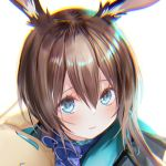 1girl amiya_(arknights) animal_ears arknights ascot bangs blue_eyes blue_jacket blue_neckwear blush brown_hair close-up commentary_request frilled_ascot frills head_tilt holding holding_stuffed_animal jacket long_hair multicolored multicolored_eyes pottsness rabbit_ears simple_background smile solo stuffed_animal stuffed_bunny stuffed_toy white_background