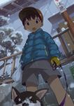 1boy :o animal bag baseball_cap blue_jacket breath brown_hair child commentary_request dog down_jacket from_below gloves hat holding holding_bag jacket leash long_sleeves male_focus noeyebrow_(mauve) open_mouth original outdoors shiba_inu shorts snow snowing winter