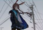 1girl absurdres amiya_(arknights) animal_ears arknights artist_name black_legwear blue_eyes blue_skirt blush brown_hair closed_mouth clouds cloudy_sky expressionless eyebrows_visible_through_hair highres kuini long_hair looking_at_viewer outdoors pantyhose power_lines skirt sky solo