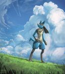 blue_sky clouds cloudy_sky creature day full_body gen_4_pokemon grass highres looking_away looking_to_the_side lucario mcgmark no_humans pokemon pokemon_(creature) red_eyes scenery signature sky solo standing
