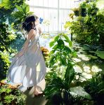 1girl animal ass bare_arms bare_shoulders black_footwear black_hair breasts bug butterfly closed_eyes commentary_request day dress full_body greenhouse halter_dress highres indoors insect leaf lily_pad long_hair no_panties original plant see-through sleeveless sleeveless_dress small_breasts solo standing sunlight umishima_senbon water