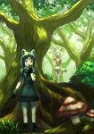 2girls animal_ears black_dress black_hair black_ribbon blonde_hair boots brown_eyes commentary_request common_raccoon_(kemono_friends) dress fennec_(kemono_friends) forest giant_mushroom grass grey_hair hand_on_hip hand_to_own_mouth highres kemono_friends looking_afar multicolored_hair multiple_girls nature orange_dress raccoon_ears raccoon_tail ribbon short_hair skirt tail tree wasabi60 yellow_skirt