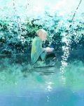 1girl barefoot black_pants blonde_hair book day floating flower loika medium_hair open_book original outdoors pants plant pointy_ears poncho ponytail reflection shadow sidelocks sitting solo water white_flower