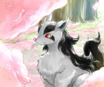 akihorisu cherry_blossoms creature gen_3_pokemon mightyena no_humans petals pokemon pokemon_(creature) red_eyes solo tree upper_body yellow_sclera