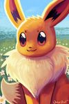 :3 brown_eyes closed_mouth creature eevee flower gen_1_pokemon grass looking_at_viewer no_humans orcaowl outdoors pokemon pokemon_(creature) signature smile solo