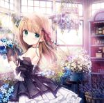 backless_dress backless_outfit black_dress black_gloves black_ribbon brown_hair dress flower flower_basket flower_shop forget-me-not_(flower) frilled_dress frills gloves green_eyes hair_flower hair_ornament hair_ribbon kimishima_ao momoi_saki original ribbon shelf shop window window_shade