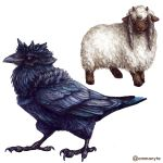bird black_eyes commentary corviknight creature english_commentary full_body gen_8_pokemon highres looking_at_viewer no_humans ommanyte pokemon pokemon_(creature) realistic red_eyes sheep simple_background white_background wooloo