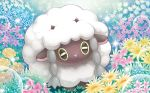 :3 black_eyes closed_mouth creature flower full_body gen_8_pokemon grass horns looking_at_viewer mizue no_humans official_art pokemon pokemon_(creature) pokemon_trading_card_game sheep solo sparkle wooloo
