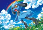 :d blue_sky clouds cloudy_sky creature day flower full_body gen_4_pokemon grass kirisaki no_humans official_art open_mouth pokemon pokemon_(creature) pokemon_trading_card_game rainbow riolu sky smile solo standing yellow_eyes