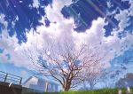 bare_tree blue_sky cherry_blossoms clouds cloudy_sky commentary_request day grass house mocha_(cotton) no_humans original outdoors petals pole railing scenery sky spring_(season) tree window