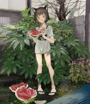 1girl absurdres animal_ears bangs bare_legs black_footwear brown_eyes brown_hair cat_ears commentary_request eating expressionless flip-flops food fruit full_body grey_shirt highres holding holding_food holding_fruit leaf looking_at_viewer original plant print_shirt sakurada22 sandals shirt short_hair short_sleeves standing watermelon
