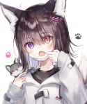 1girl :o ahoge animal_ear_fluff animal_ears animal_on_shoulder bangs black_hair black_shirt blush commentary_request eyebrows_visible_through_hair fang finger_in_mouth hair_between_eyes hair_ornament hands_up heterochromia highres jacket long_sleeves looking_at_viewer mouth_pull multicolored_hair open_mouth original purple_hair red_eyes rukako shirt simple_background sleeves_past_wrists solo tail tail_raised two-tone_hair upper_body violet_eyes white_background white_jacket wolf wolf_ears wolf_girl wolf_tail