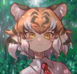 1girl :3 animal_ear_fluff animal_ears bangs black_hair commentary extra_ears eyebrows_visible_through_hair highres kemono_friends light_smile looking_at_viewer multicolored_hair necktie notora open_mouth orange_hair plaid_neckwear portrait rain red_neckwear shirt short_hair solo tiger_(kemono_friends) tiger_ears water_drop white_hair white_shirt wing_collar yellow_eyes