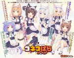 6+girls :d animal_band_legwear animal_ear_fluff animal_ears april_fools apron arm_up azuki_(nekopara) bangs bell black_legwear blonde_hair blue_eyes blue_footwear bow bowtie brown_eyes brown_footwear brown_hair cat_band_legwear cat_ears cat_girl cat_tail chestnut_mouth child chocola_(nekopara) cinnamon_(nekopara) cleavage_cutout coconut_(nekopara) commentary_request double_v eyebrows_visible_through_hair fangs fishnet_legwear fishnets flat_chest frilled_apron frills full_body green_eyes hair_between_eyes hand_on_hip hands_together heterochromia highres index_finger_raised interlocked_fingers jingle_bell logo long_hair looking_at_viewer low_twintails maid maid_headdress maple_(nekopara) multiple_girls name_tag nekopara official_art open_mouth orange_footwear pantyhose paw_pose polka_dot polka_dot_background puffy_short_sleeves puffy_sleeves purple_footwear purple_hair red_footwear ribbon-trimmed_clothes ribbon_trim sayori shoes short_hair short_sleeves simple_background slit_pupils smile striped_tail tail thigh-highs translation_request twintails two_side_up uniform v vanilla_(nekopara) waist_apron white_hair white_legwear wrist_cuffs yellow_eyes younger