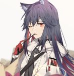 1girl animal_ear_fluff animal_ears arknights bangs black_gloves black_shirt brown_eyes commentary_request eating eyebrows_visible_through_hair food fur fur_trim gloves grey_hair hair_between_eyes highres holding holding_food holding_pocky idass_(1155101099) jacket long_hair long_sleeves looking_at_viewer multicolored multicolored_clothes multicolored_gloves neckwear one_eye_closed open_mouth pocky red_gloves shirt simple_background solo teeth texas_(arknights) upper_body white_background white_jacket wolf_ears
