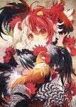 1girl animal animal_on_head bird bird_wings chick chicken close-up commentary_request covered_mouth feathered_wings head_tilt highres looking_at_viewer medium_hair multicolored_hair niwatari_kutaka on_head red_eyes redhead rooster touhou toutenkou two-tone_hair upper_body white_hair white_wings wings