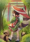 1girl :3 animal_ears bloomers brown_eyes brown_hair brown_skirt checkered checkered_scarf from_behind full_body futatsuiwa_mamizou glasses leaf leaf_on_head looking_back nature parasol platform_footwear raccoon_ears raccoon_tail scarf sen1986 skirt standing tabi tail tanuki torii touhou tree umbrella underwear