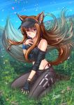 1girl absurdres adsouto animal_ear_fluff animal_ears artist_name asymmetrical_gloves bangs black_gloves black_pants blue_sky bracelet brown_hair casual collarbone day earrings eyebrows_visible_through_hair fingerless_gloves floating_hair full_body gloves grass hair_between_eyes highleg highleg_panties highres holo huge_filesize jewelry long_hair midriff off_shoulder outdoors paid_reward panties pants patreon_reward red_eyes red_panties shiny shiny_skin shoes side-tie_panties signature single_glove sitting sky sneakers solo spice_and_wolf stomach tail underwear very_long_hair visor_cap wariza wolf_ears wolf_tail wristband
