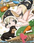 1girl animal_ears artist_request backless_outfit baseball_bat blonde_hair blue_eyes bone brown_footwear carrot closed_mouth dachshund dog dog_tail erica_hartmann eyebrows_visible_through_hair food_bowl heart looking_at_viewer official_art shiny shiny_hair short_hair shoulder_blades solo strike_witches tail top-down_bottom-up world_witches_series wristband