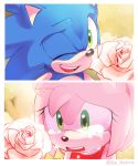 1boy 1girl amy_rose animal_ears artist_name crying crying_with_eyes_open derivative_work dress flower green_eyes hedgehog hedgehog_ears highres isa-415810 nature one_eye_closed open_mouth pink_fur rose screencap smile snout sonic sonic_the_hedgehog sonic_x tears teeth tree