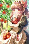 1girl apple apple_tree apron apron_basket apron_lift bangs black_dress blunt_bangs blush bow bowtie breasts brown_hair commentary cowboy_shot day dress food fruit hairband highres juliet_sleeves leaf lifted_by_self light_rays lolita_hairband long_sleeves looking_at_viewer maid_apron medium_breasts medium_hair onenechan original outdoors ponytail puffy_sleeves red_eyes red_neckwear sidelocks smile solo standing sunbeam sunlight tree tree_branch