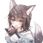 1girl animal_ears blue_eyes brown_hair commentary fang gen_3_pokemon heterochromia holding holding_pokemon hood hooded_jacket jacket long_sleeves open_mouth original pokemon pokemon_(creature) poochyena red_eyes rukako short_hair skin_fang sleeves_past_wrists tail white_jacket wolf_ears wolf_tail yoyogi_(rukako)