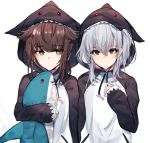 2girls alternate_costume brown_hair cosplay grey_eyes hair_flaps hatsuzuki_(kantai_collection) ikea_shark kagurazaka_miyabi kantai_collection kigurumi multiple_girls shark_costume sidelocks stuffed_animal stuffed_shark stuffed_toy suzutsuki_(kantai_collection) white_hair