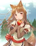 1girl animal_ears apple bangs blush bomhat brown_eyes brown_hair cowboy_shot eyebrows_visible_through_hair food fruit holding holding_food holding_fruit holo looking_at_viewer sash smile solo spice_and_wolf tail tree wolf_ears wolf_tail