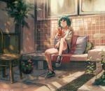 1girl black_footwear brown_eyes chair cola eyebrows_visible_through_hair green_hair kouka_(mrakano5456) long_sleeves looking_away original plant potted_plant scenery shirt shoes short_hair shorts sitting sneakers solo watermark web_address white_shirt