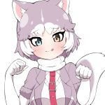 1girl :3 animal_ears blush breasts closed_mouth collar dog_(mixed_breed)_(kemono_friends) dog_ears dog_girl dog_tail elbow_gloves eyebrows_visible_through_hair gloves grey_hair heterochromia highres kemono_friends large_breasts looking_at_viewer paw_pose short_hair short_sleeves smile solo tail takosuke0624 tongue tongue_out upper_body white_gloves white_hair