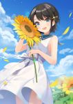 1girl :d aqua_eyes black_hair blue_sky blush clouds cloudy_sky commentary_request cowboy_shot dated day dress flower hair_ornament happy_birthday highres hololive looking_at_viewer oozora_subaru open_mouth shigure_ui short_hair sky sleeveless sleeveless_dress smile solo sunflower virtual_youtuber white_dress