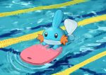 afloat closed_mouth commentary_request gen_3_pokemon kickboard lane_line mudkip no_humans pokemon pokemon_(creature) pool ripples sawasamesuke solo splashing swimming water