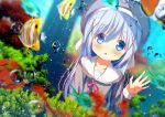 1girl against_glass air_bubble animal aquarium bangs beret blue_eyes blue_hair blurry blurry_foreground blush bow bubble chinomaron clownfish collarbone commentary_request depth_of_field eyebrows_visible_through_hair fish gochuumon_wa_usagi_desu_ka? grey_headwear grey_shirt hair_between_eyes hair_ornament hat kafuu_chino long_hair long_sleeves looking_at_viewer parted_lips red_bow sailor_collar shirt signature solo very_long_hair water white_sailor_collar x_hair_ornament