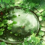 flower from_above green_theme lily_pad original pond quacx3 scenery watermark