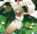 1girl animal_ears arknights arm_up armpits bangs blush closed_mouth collarbone commentary_request dark_skin dress expressionless eyebrows_visible_through_hair flower from_above holding horns koio lily_pad long_hair looking_at_viewer looking_up low_twintails ripples see-through shawl silver_hair sitting sleeveless sleeveless_dress soaking_feet solo twintails water wet wet_clothes wet_dress white_dress white_flower