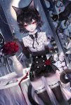 1girl animal_ears artist_name bangs black_bow black_cat black_gloves black_hair black_legwear black_neckwear bow bowtie cat cat_ears cat_tail commentary cowboy_shot dutch_angle elbow_gloves flower gloves hand_up highres holding holding_knife holding_weapon knife looking_to_the_side original red_eyes red_flower red_rose rose sheya short_hair signature standing symbol_commentary table tail thigh-highs vase weapon