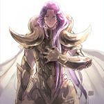 1boy armor golden_armor male saint_seiya vulpese